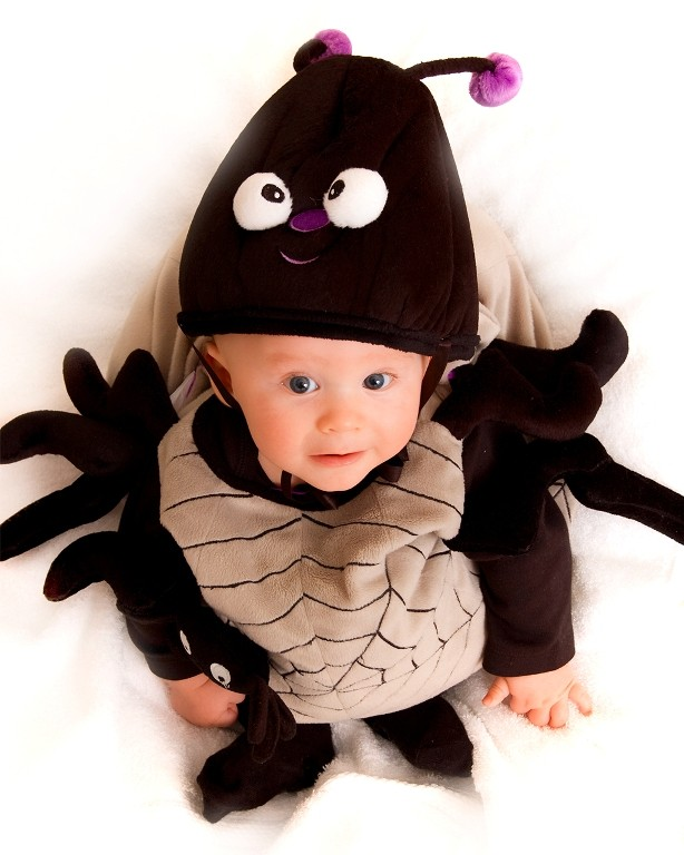 Cute baby spider costume  sc 1 st  About animals & Cute baby spider costume - animalcarecollege.info